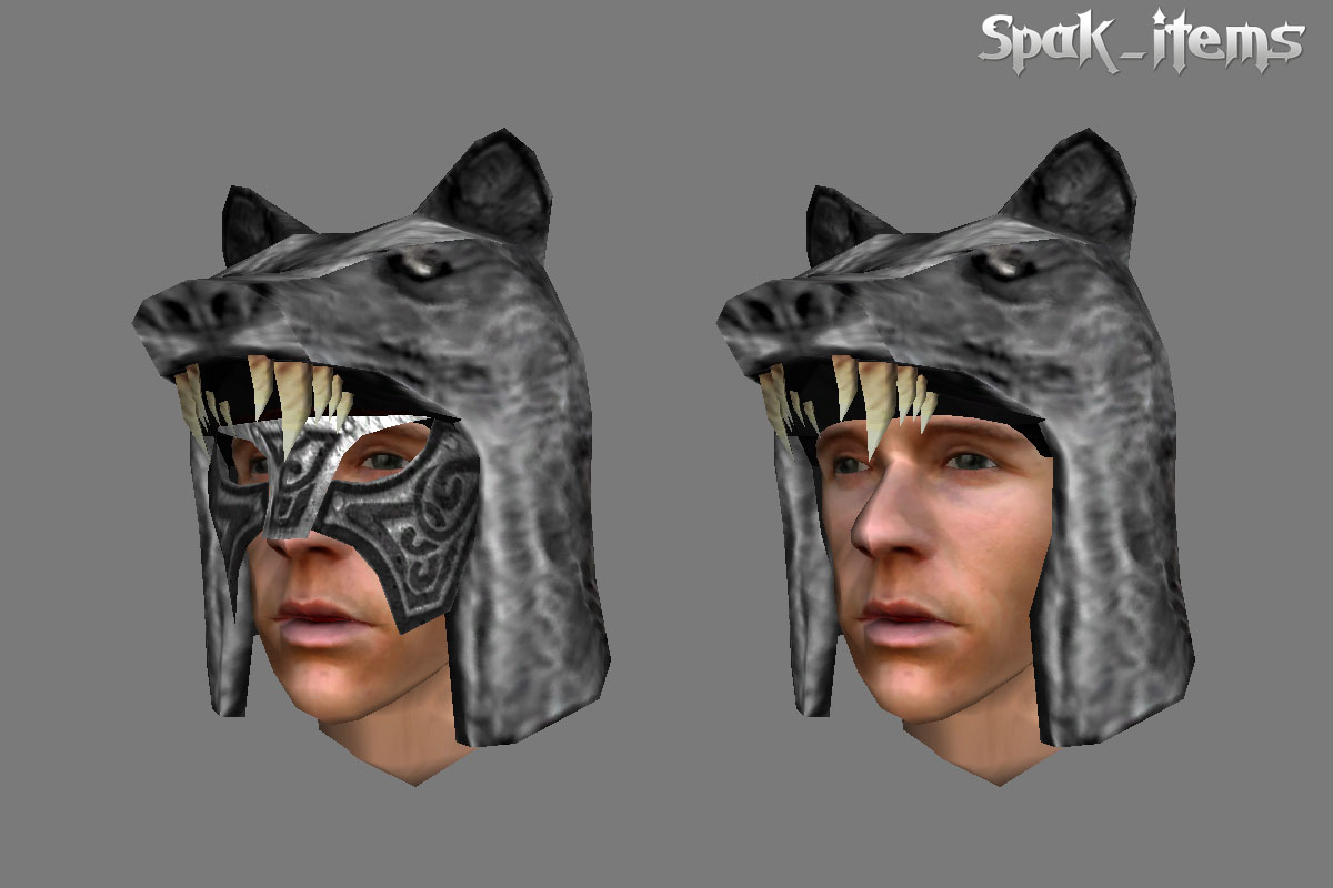 Wolf Helmet, Rusty Armor, Spider Shield etc.